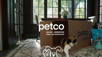 PETCO TV Spot, 'Si fueramos mascotas' [Spanish] - Thumbnail 10