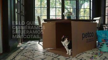 PETCO TV Spot, 'Si fueramos mascotas' [Spanish] - Thumbnail 8