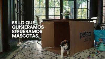 PETCO TV Spot, 'Si fueramos mascotas' [Spanish] - Thumbnail 9