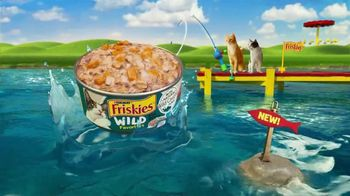 Friskies TV Spot, 'Friskies World: Keeps Getting Better' - Thumbnail 5