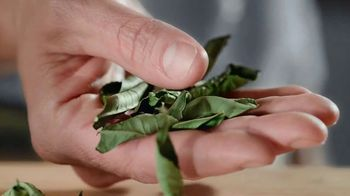 Pure Leaf Green Tea TV Spot, 'No Compromise' - Thumbnail 4