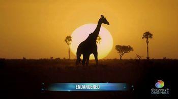 Discovery+ TV Spot, 'This April' - Thumbnail 5