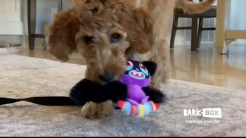BarkBox TV Spot, 'New Toys and Treats Every Month' Ft. Zak George, Song by Swirling Ship - Thumbnail 2