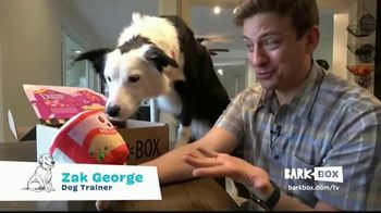 BarkBox TV Spot, 'New Toys and Treats Every Month' Ft. Zak George, Song by Swirling Ship