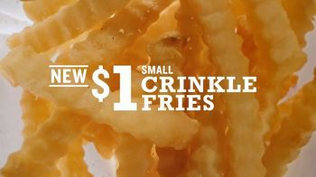 Arby's $1 Crinkle Fries TV Spot, 'Still Got Curlies' Song by Sugar Ray