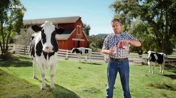 Lactaid TV Spot, 'Real Cow'