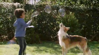 Purina Dog Chow TV Spot, 'Keep Life Simple' - Thumbnail 3