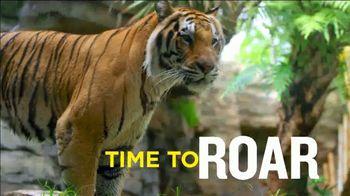 Busch Gardens Memorial Sale TV Spot, 'Save 50%' - Thumbnail 5