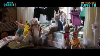 Peter Rabbit 2: The Runaway - Alternate Trailer 7
