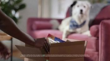 VISA TV Spot, 'Zero Liability: Dog Biscuits' - Thumbnail 4