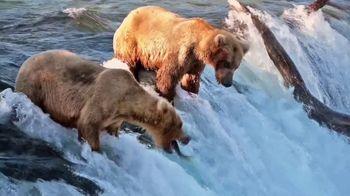 Travel Alaska TV Spot, 'Come Visit Alaska in Summer 2021' Featuring Mike Dunleavy - Thumbnail 4