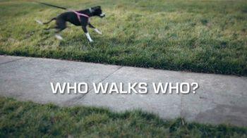 Sit Means Sit TV Spot, 'Who Walks Who?' - Thumbnail 2