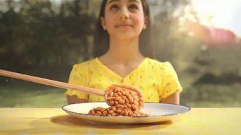 Bush's Best Baked Beans TV Spot, 'Picnic Table Gravity' - Thumbnail 6