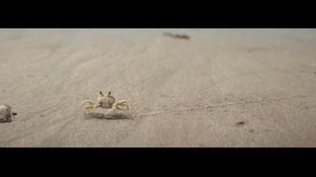 Corona TV Spot, 'Protege la playa' [Spanish] - Thumbnail 5