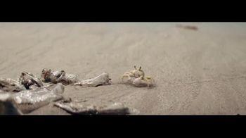 Corona TV Spot, 'Protege la playa' [Spanish] - Thumbnail 6