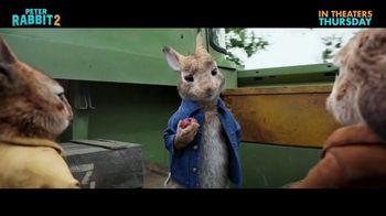 Peter Rabbit 2: The Runaway - Alternate Trailer 23