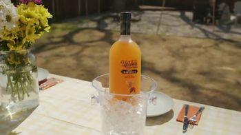 Uptown Wine Cocktails Mango Margarita TV Spot, 'Celebrate Summer' Song by Randy Sharp - Thumbnail 1
