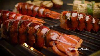 Harris Teeter Fishermans Market TV Spot, 'Grilling Season' - Thumbnail 7