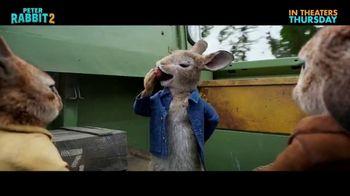 Peter Rabbit 2: The Runaway - Alternate Trailer 22