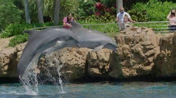 SeaWorld TV Spot, 'See the World Again' - Thumbnail 2