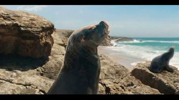 Coors Light TV Spot, 'Sea Lion' Song by Roy Ayers Ubiquity - Thumbnail 3