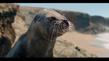 Coors Light TV Spot, 'Sea Lion' Song by Roy Ayers Ubiquity - Thumbnail 5