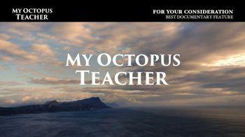 Netflix TV Spot, 'My Octopus Teacher' - Thumbnail 10