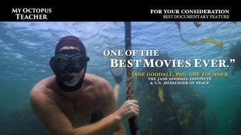 Netflix TV Spot, 'My Octopus Teacher' - Thumbnail 4