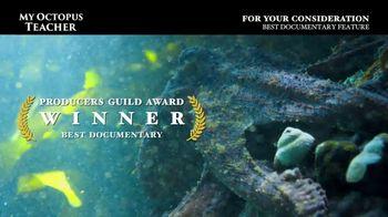 Netflix TV Spot, 'My Octopus Teacher' - Thumbnail 6