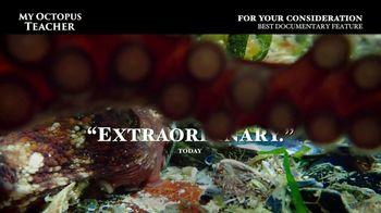 Netflix TV Spot, 'My Octopus Teacher' - Thumbnail 7