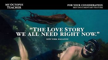 Netflix TV Spot, 'My Octopus Teacher' - Thumbnail 9