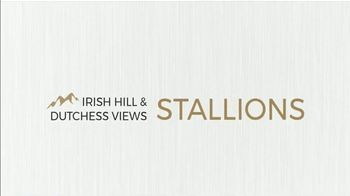 Irish Hill & Dutchess Views Stallions TV Spot, 'King For a Day' - Thumbnail 1