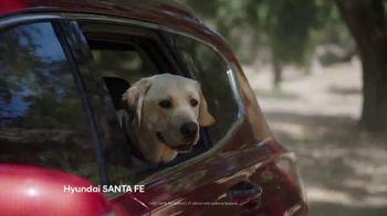 Hyundai TV Spot, 'Size of Adventure' [T2] - Thumbnail 2