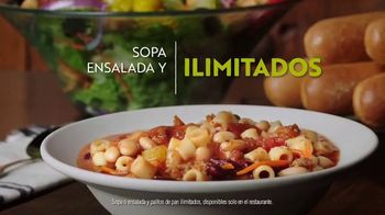 Olive Garden Never Ending Soup, Salad and Breadsticks TV Spot, 'Primer plato ilimitado' [Spanish] - Thumbnail 9
