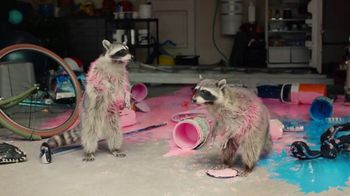 Volkswagen TV Spot, 'Raccoons: Sedans' [T2]
