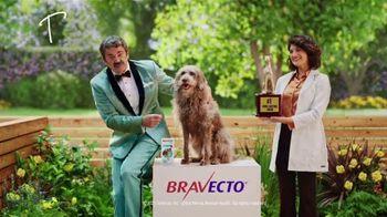 Bravecto TV Spot, 'Bravo' - Thumbnail 7