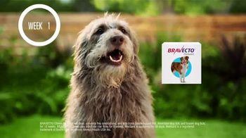 Bravecto TV Spot, 'Bravo' - Thumbnail 1