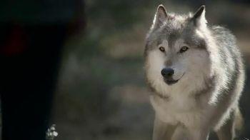 Blue Buffalo BLUE Wilderness TV Spot, 'Look Closely'