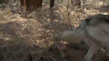 Blue Buffalo BLUE Wilderness TV Spot, 'Look Closely' - Thumbnail 4