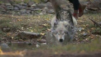 Blue Buffalo BLUE Wilderness TV Spot, 'Look Closely' - Thumbnail 5