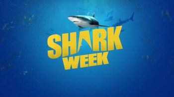 Discovery+ TV Spot, 'Sharkbait With David Dobrik' - Thumbnail 10