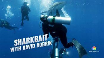 Discovery+ TV Spot, 'Sharkbait With David Dobrik' - Thumbnail 6