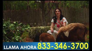 Grupo Estrella, LLC. TV Spot, 'Graciela Beltrán en la granja' [Spanish] - Thumbnail 6