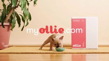 Ollie Pets, Inc TV Spot, 'It All Starts With Their Food' - Thumbnail 8