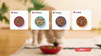Ollie Pets, Inc TV Spot, 'It All Starts With Their Food' - Thumbnail 5