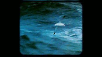 Rolex TV Spot, 'Our Precious Ecosystem' - Thumbnail 2