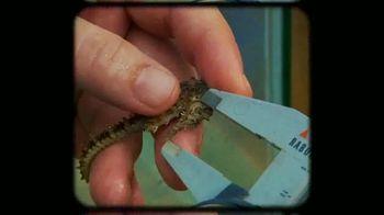 Rolex TV Spot, 'Our Precious Ecosystem' - Thumbnail 3