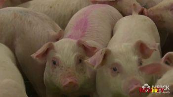 Merck Animal Health TV Spot, 'Invested Partner' - Thumbnail 5