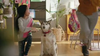 Bissell TV Spot, 'We Are Pet Parents' - Thumbnail 5