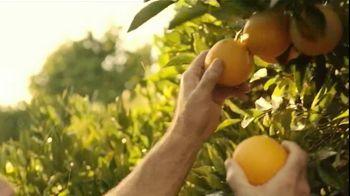 Tropicana TV Spot, 'Orange Grower' - Thumbnail 3